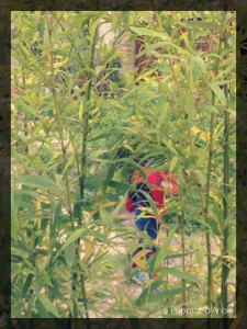 Spiderman dans les Bambous